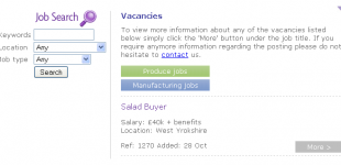 Job Search Engine for Recruitment Agency